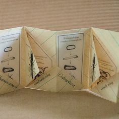 Artist Book about Insect Orders by PurplebeanBindery on Etsy