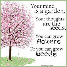 Your mind is a garden. Your thoughts are the seeds. You can grow flowers, or you can grow weeds :)