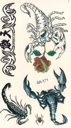 Graphic Scorpion Temporary Tattoos by Temporary Tattoos. $5.49. Easy to apply, easy to remove You can use different designs to go with any occasion or outfit. They do not leave any permanent marks like the real thing, so you have the option to change looks regularly! They are completely safe. Try some on and see what happens... you never know!!  How to apply:  1.Cut out tattoo of choice and remove clear sheet.  2. Place tattoo face down on skin  3. Wet the tattoo thoroughly w...