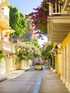 Carthagène des Indes, Colombie Beautiful Places To Travel, Wonderful Places, Travel Around The World, Around The Worlds, Balcony Plants, Colombia Travel, Summer Backgrounds, World Of Color, Travel Goals