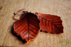 leather beech leaf earrings ~ livit vivid
