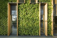 Image 2 of 17 from gallery of Alliander HQ / RAU architects. Photograph by Marcel van der Burg Building Facade, Green Building, Facade Architecture, Landscape Architecture, Outdoor Spaces, Outdoor Living, Outdoor Decor, Green Facade, Small Buildings