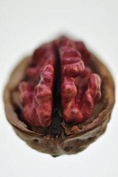 Red Walnut | Flickr - Photo Sharing!