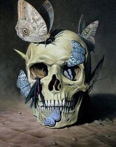 Vanitas 1 by Suzanne Wainach. I came into contact with vanitas when I was fifteen. This kind of art serves as a memento mori. Moths and butterflies are important symbols in the book; Gomeisa Sargas sees them as representative of Rephaim and humans. Philippe De Champaigne, Art Noir, Totenkopf Tattoos, Skull And Bones, Skeleton Bones, Human Skeleton, Skull Art, Skull Head, Dark Art