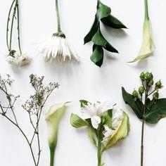 Fresh flowers | dirtyyydan | VSCO Cam