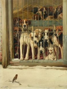 The Care and Kenneling of 18th Century Foxhounds and Sporting Dogs via Mimi Matthews