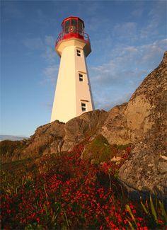 Cape Bauld Lighthouse, Newfoundland Canada at Lighthousefriends.com