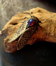 Bug Brooch / Pin, Gorgeous CICADA MEXICAN OPAL, Metal Bonded Not Glued. $21.99, via Etsy.