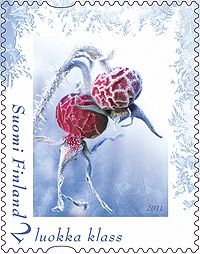 Ari Lakaniemi, Susanna Rumpu, second class stamp, 2011 Old Stamps, You've Got Mail, Small Art, Stamp Collecting, My Stamp, Christmas Inspiration, Postage Stamps, Winter, Book Art