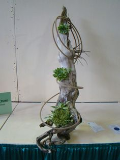 "1st place in class by Michele Bishop. ""Arboriculture"" A design featuring wood. 2014"