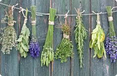 Preserving herbs good notes for your book of shadows. Among the most common forms of preserving herbs is as an oil. Oils are made from many different plants Herbal Remedies, Health Remedies, Home Remedies, Natural Remedies, Holistic Remedies, Holistic Healing, Drying Dill, Drying Herbs, Drying Flowers