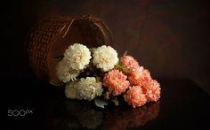Flowers by Luiz Laercio on 500px