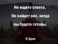 15726281_1250595575000649_1404822844927224501_n.jpg (496×374)