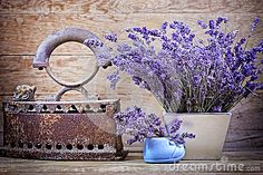 Dry lavender and vintage style