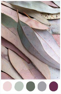 Late Autumn colour palette inspiration - blush, sage, moss, fog, mulberry