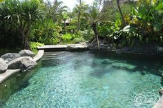 swimming pools that look like ponds | house exterior kitchen massage room pond pond and garden pool