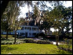 Cypress Grove Park in Orlando. A beautiful park worth exploring.