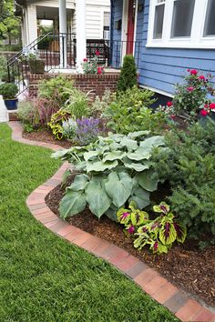 Use reclaimed bricks to form a tidy border to separate your lawn from plantings