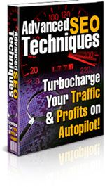 Advance Seo Techniques  http://www.rapidbusinessideas.com