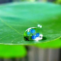 Stati generali della Green Economy: Le 10 tesi per una road map verso efficienza e risparmio di energia