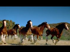 USA vs Belgium Round of 16 HYPE | Budweiser World Cup 2014 Commercial