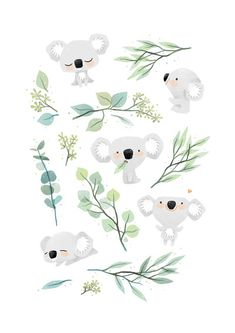 Koala and Eucalyptus by freeminds