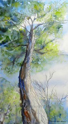 A Different View - Cristina Dalla Valentina Art