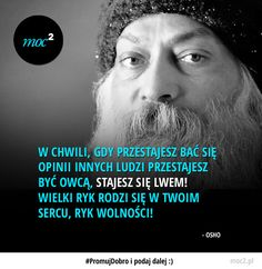 Jesteś już lwem? Top Quotes, Life Quotes, Cool Words, Wise Words, Weekend Humor, Deep Thought Quotes, New Things To Learn, Osho, Life Motivation
