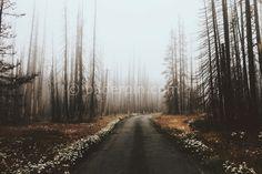 Tumblr Hintergrund - https://bilderpin.com/14417/tumblr-hintergrund/ -Bilder Pin