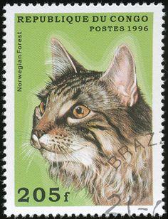 Republic of Congo 1996 Cat Stamps - Norwegian Forest Cat
