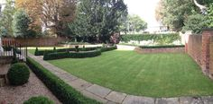 Instant yew and boxed hedging first season