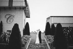 Centennial Vineyard, Bowral, Southern Highlands | Image: Byron Loves Fawn Wedding Photography