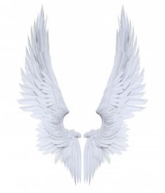 Angel Wings Png, Lucifer Wings, Angel Artwork, Wings Drawing, Angel And Devil, White Wings, Angels And Demons, Art Reference, Illustration