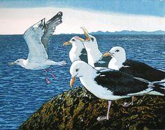 Gull - on the Menai Straits. Mike Smith Linocut, 3 of 8 remaining, 20 x unframed. Linocut Prints, Art Prints, Stained Glass Birds, Seascape Art, Bird Artwork, Sea Birds, Wood Engraving, Wildlife Art, Print Artist
