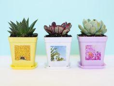 15 DIY Planters You