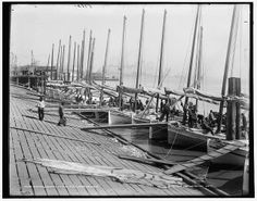 Oyster luggers,levee,docks,piers,boats,shellfish,New Orleans,Louisiana,LA,1890 | eBay