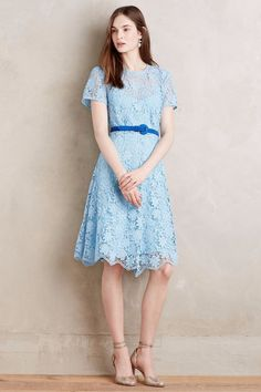 8812ad876f NWT ANTHROPOLOGIE CASTINE PETITE BLUE LACE DRESS by SYLVESTER 2P