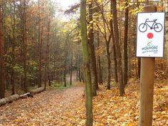 """Nadleśnictwo Kolbudy oddało do użytku nowy, znakowany Szlak Rowerowy """"Wolność jest w Naturze"""". W dużej mierze pokrywa się on z wyznakowaną przed laty Pętlą"""