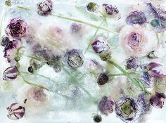 Bijzonder: kunstenaar Kenji Shibata 'schildert' met bloemen, bevroren in ijs