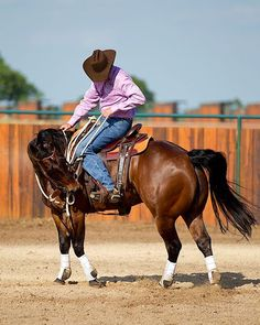 Training Tip of the Week: Rearing horse tip: Handle the situation safely in the saddle.