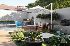 Mosman landscape design styling project. Photography by Sue Stubbs. Construction by Valley Garden Landscapes. Styling by Adam Robinson Design