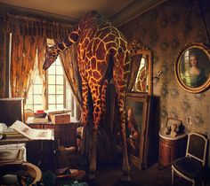 Miss Aniela (Natalie Dybisz), Fine-art Photographer  finding sensational things day to day to incorporate into the photos