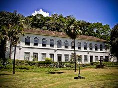 Fazenda Chacrinha   Hotel Palmeira Imperial