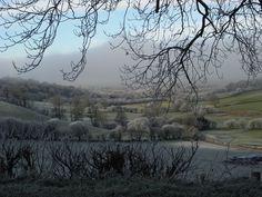 Forest Fields, Wales