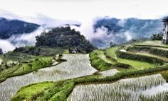 Banaue Rice Terraces. Philippines. #travel #rice #riceterraces #nature #beauty #philippines #banaue #ooaworld #ooasia #sharingbeauty  www.ooaworld.com