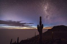 First light of dawn and the last of the Milky Way at the singular place that is the Salar de Uyuni. Photo taken from one of the cactus studded ancient volcanoes that dot the salar Isla del Pescado. Bolivia, Black Rock Desert, The Far Side, Stay Wild, Mayan Ruins, Cactus Y Suculentas, Milky Way, Farm Life, South America