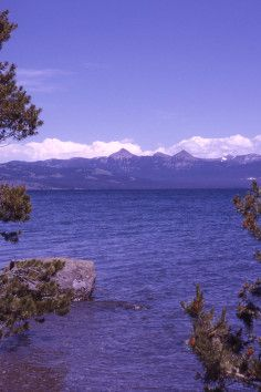 Yellowstone Lake is the largest body of water in the park and accessible to visitors. #park