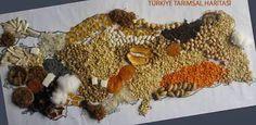 türkiye tarım ürünleri haritası el yapımı - Google'da Ara