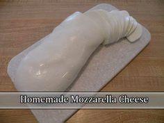 Homemade Mozzarella Cheese