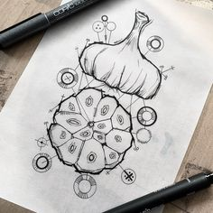 "Art Illustration Tattoo on Instagram: ""Little quick study garlic, one of my most favorite foods, I think I would go through 4-6 bulbs of garlic every week, this stuff is so…"""